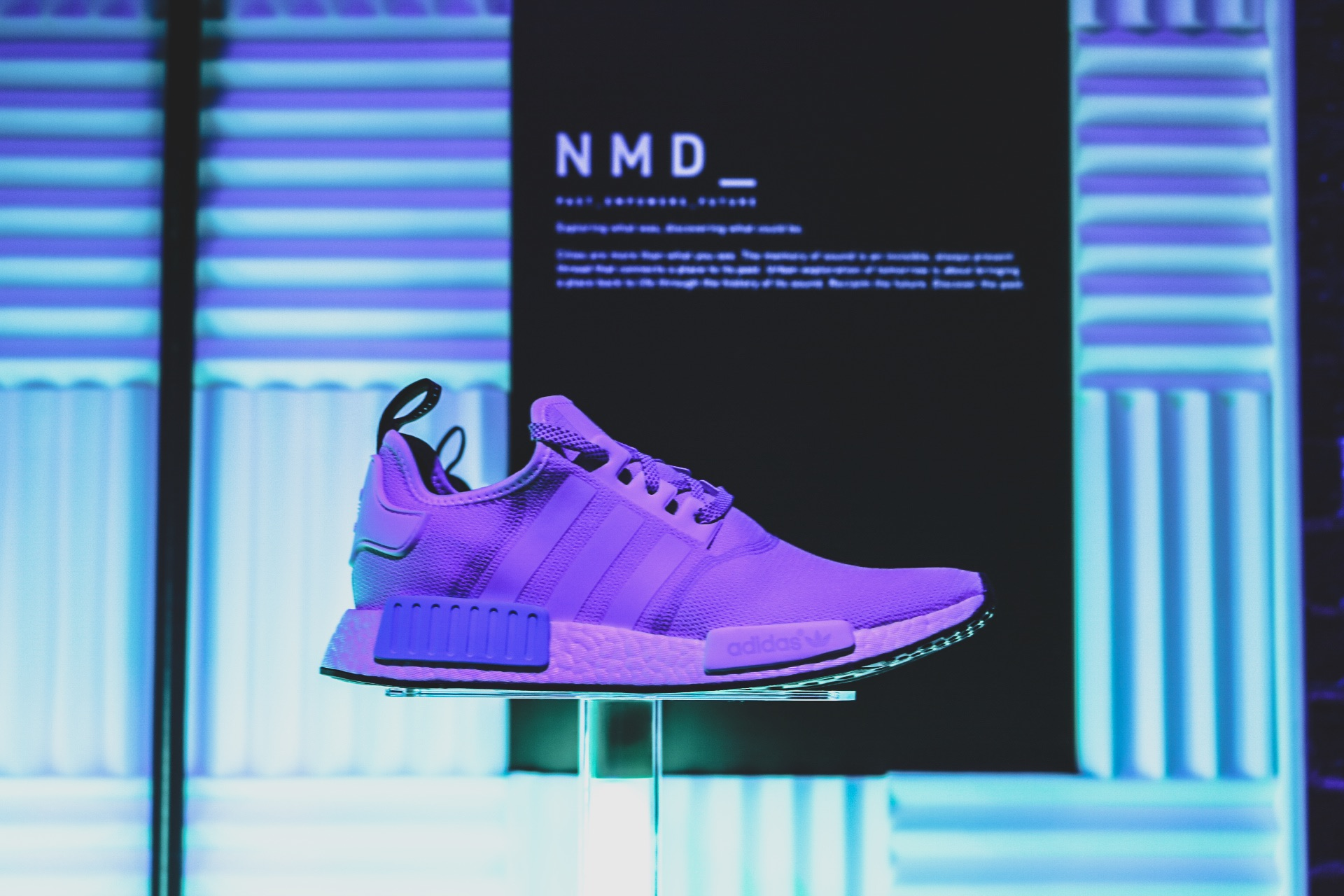 273588fe5 ... launch party of the latest series of Adidas NMDs. Located in East  London